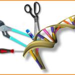 Имунохимични анализи
